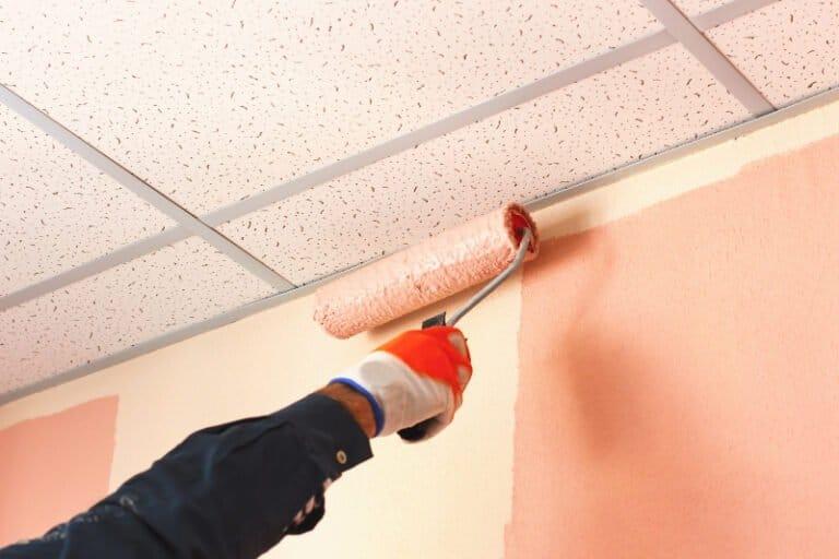 house painters auckland region
